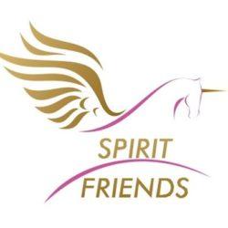 SPIRIT ohne rand