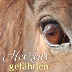 Renno-Pferdebotsch